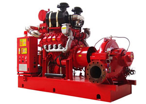 Fire Fighting System Pump